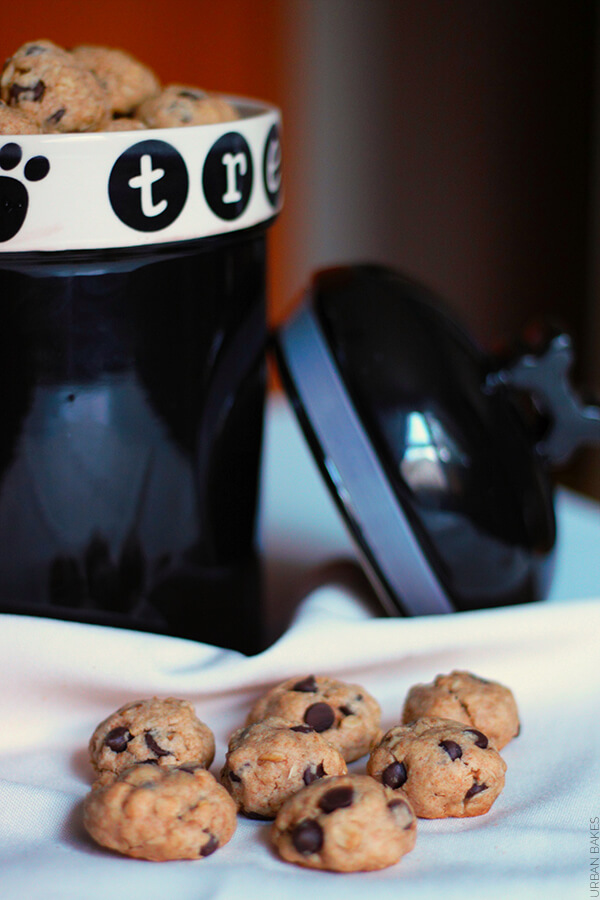 Dog Safe Bite Size Carob Chip Cookies | URBAN BAKES