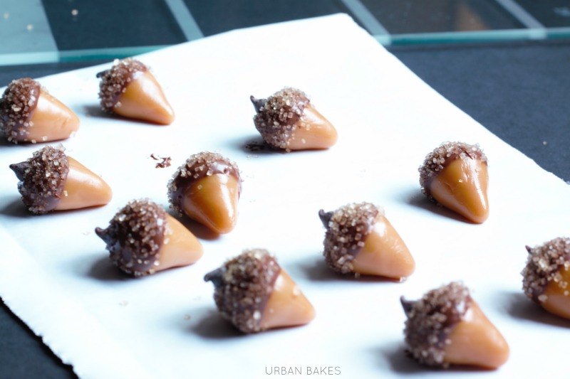 How to Make Candy Acorns   URBAN BAKES