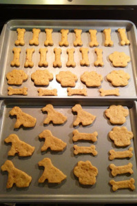 Peanut Butter Dog Biscuits | URBAN BAKES