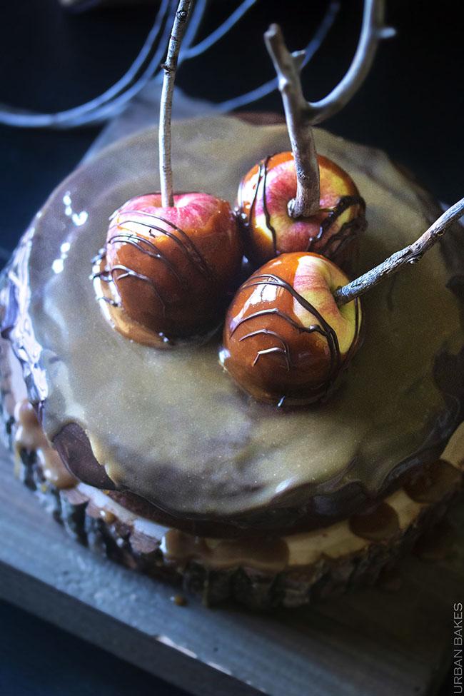 Chocolate Covered Caramel Apple Brown Sugar Cake | URBAN BAKES