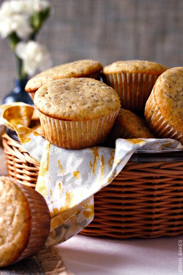 Triple Citrus Poppy Seed Muffins | urbanbakes.com