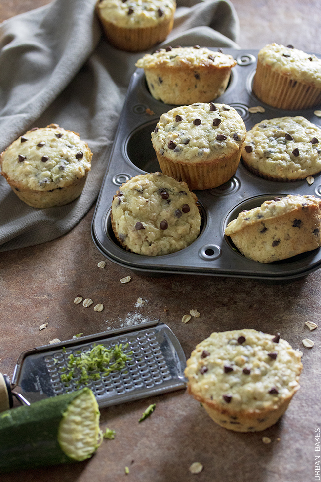 Chocolate Chip and Oat Zucchini Muffins made with Sour Cream | URBAN BAKES