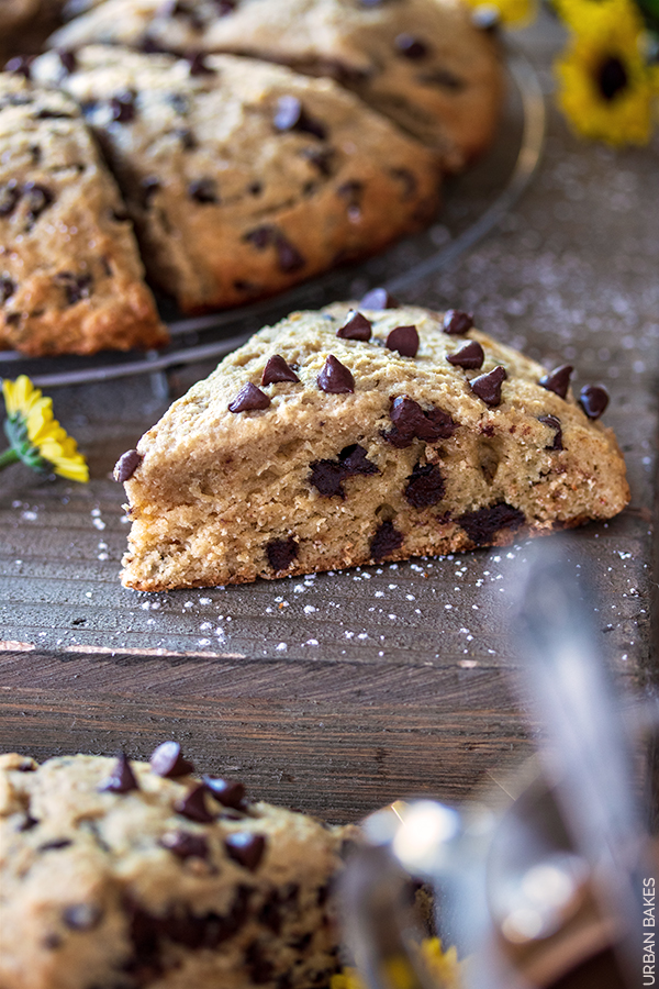 Chocolate Chip Banana Scones | URBAN BAKES