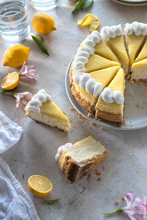 Lemon Cheesecake | URBAN BAKES